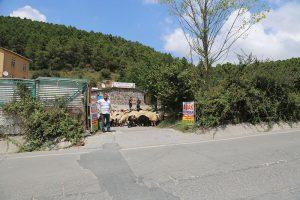 Kadıköy-adak-keçi