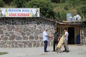 Kadıköy-adak-kurban-fiyatları (2)